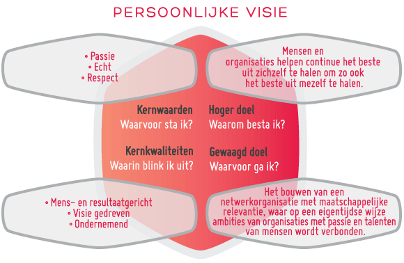 infographic visie